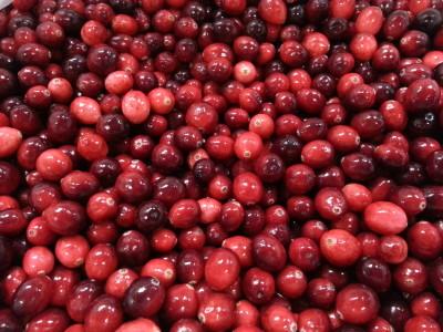 Bulk cranberries from Earl's Organic Produce