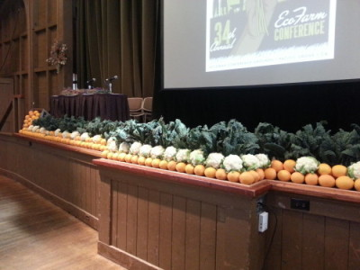 "Beautiful Produce display by Earl and Sita, Helge and Mark from ""An Organic Conversation Radio Show"""