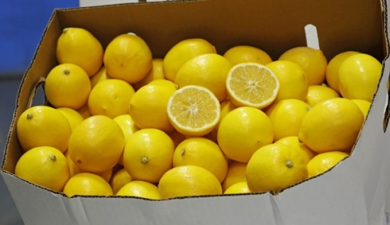 Meyer lemon cropped blog