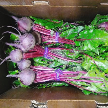 Ellwood Bunched Beets