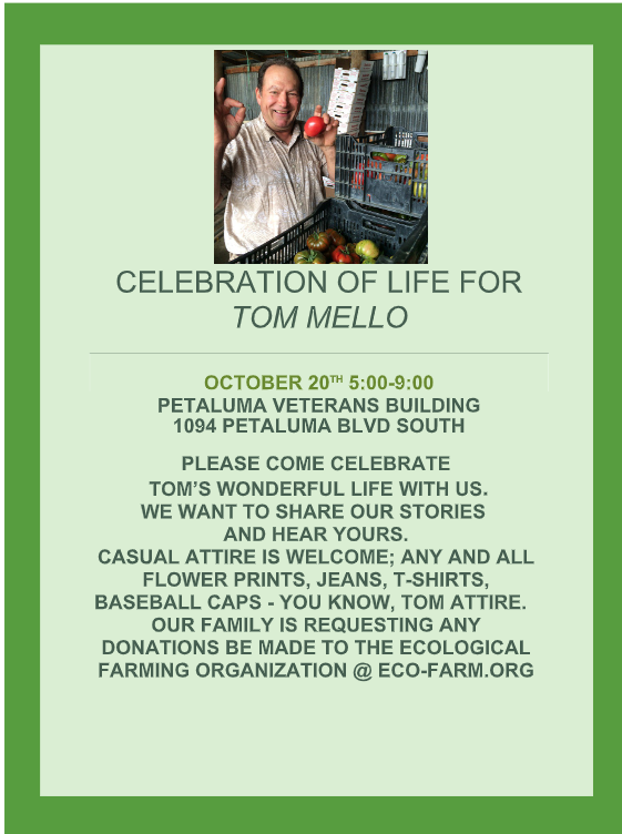 Tom Mello